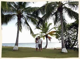 US Virgin Island Marriage under palm trees