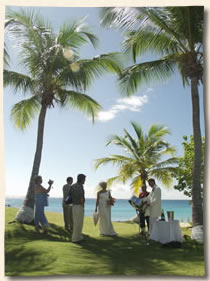 Virgin Islands Marriage - On the grassy area of Bluebeards Beach